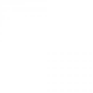logo_w04