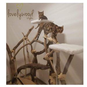 Katzenbaum aus Schwemmholz